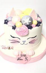 cat cake Shamoni
